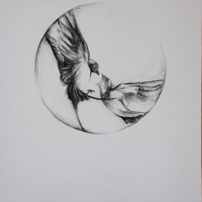 In Flight I: Contemplating Swallows - Charcoal on paper - Framed